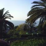 COGOLETO (GE): Le tue vacanze in tranquillità